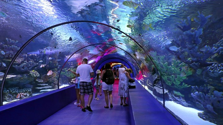 Dubai Airport to replace security booths with face-scanning virtual fish tanks